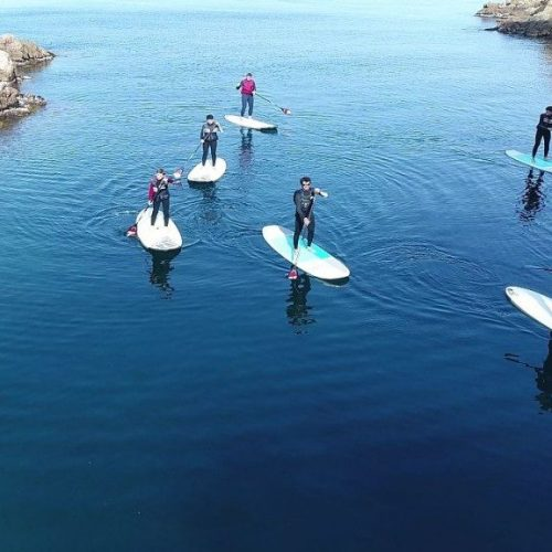 Excursion Paddle Surf